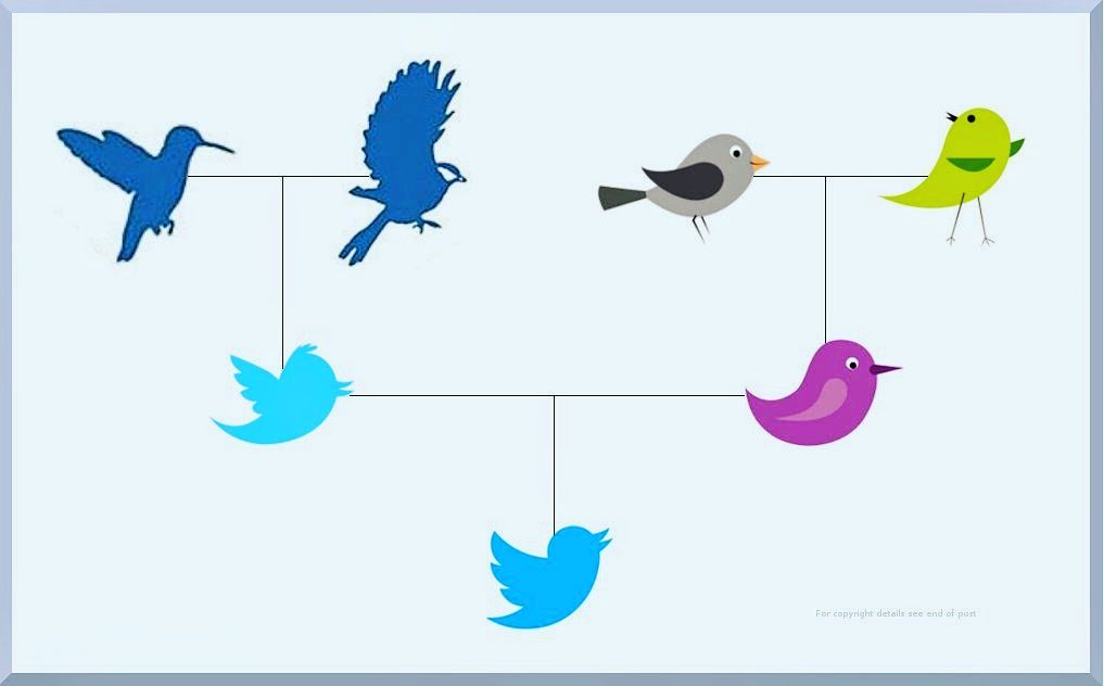 Discover your Twitter Family Tree image